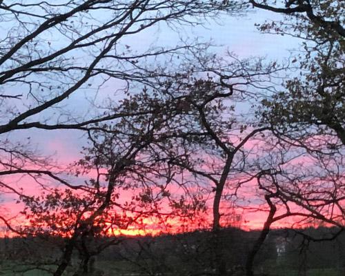 Sonnenuntergang im Penthouse in Adendorf